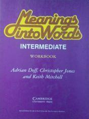 Meaning Into Words Intermediate Workbook